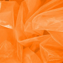 ORGANZA EX ORANGE