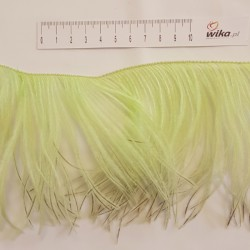 FRINGE OSTRICH FEATHERS 1PLY PISTACHIO