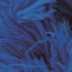 OSTRICH FEATHERS FRINGES 3PLY CC ELECTRIC BLUE