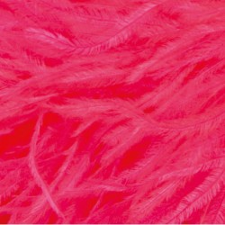 OSTRICH FEATHERS FRINGES 3PLY CC PINK TROPICANA