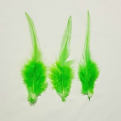 FEATHERS 01