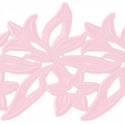 SABRINA RIBBON DSI CARNATION