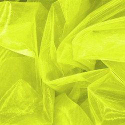 ORGANZA EX TROPIC LIME